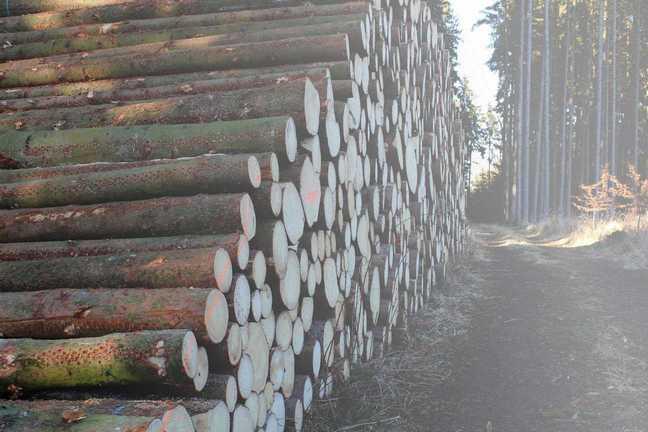 Agrar- und Forstwirtschaft habka GbR